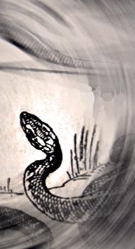Ilustration du serpent dans un dictionnaire Larousse de 1930. Photo: PHB