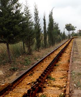 Rails encore visibles sur la commune de Baabda. Photo: LSDP
