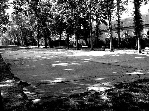 La piste de patins à  roulettes du Parc de saint-Cloud. Etat actuel. Photo: Les Soirées de Paris