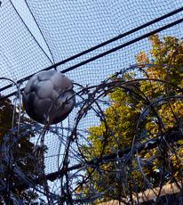 Ballon. Cour de la prison de la Santé. Photo: Les Soirées de Paris
