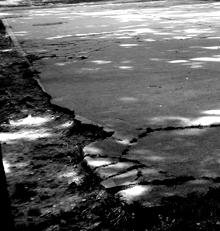 Dtéail de la piste de patins à roulettes du Parc de saint-Cloud. Photo: LSDP