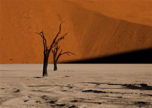 Aspect de la Namibie ©Corinne_Begou