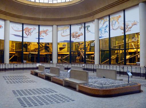 La salle des fauves à l'abandon. Photo: Les Soirées de Paris