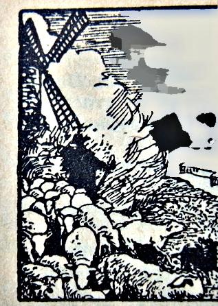 Illustration tirée d'un dictionnaire Larousse de 1931. Photo: LSDP
