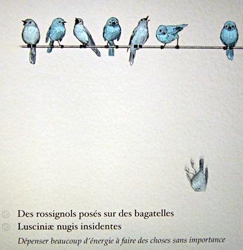 Image extraite de l'abécédaire d'Erasme sur iPad. Photo: LSDP