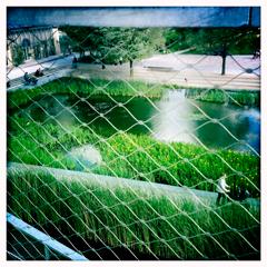 Aspect du jardin Martin Luther King. Photo: LSDP