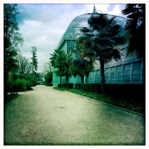 Derniers jours tranquilles pour le jardin des Serres d'Auteuil. Les trvaux pourraient commencer en septembre. Photo: LSDP