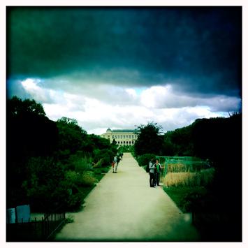Aspect du Jardin des Plantes juste avant la pluie. Photo: PHB/LSDP
