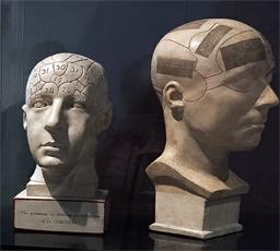 aspect de la collection du ouveau musée de L'homme. Photo: Valérie Maillard