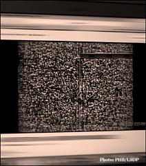 """""""Free to run"""". Photo du film à partir d'un ordinateur: PHB/LSDP"""