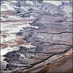 Embouchure du Colorado. Détail d'une photo de Franck Vogel