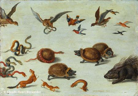""" Les ennemis des serpents"" de Jan Van Kessel ©studio Bernardot"