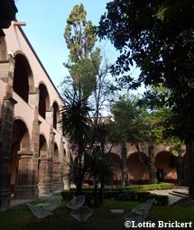 Le centre Nigromante Bellas Artes. Photo: Lottie Brickert